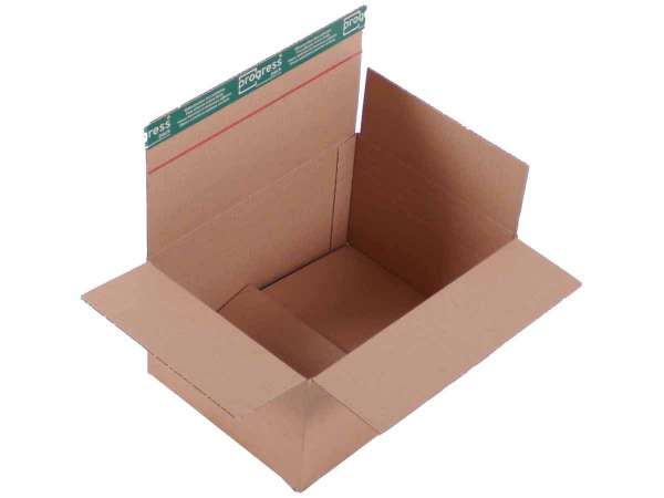 Versandkarton Premium 310x230x160-100 mm