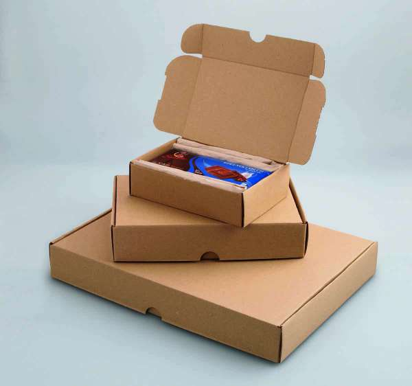 Maxibrief-Kartons 330x242x45 mm