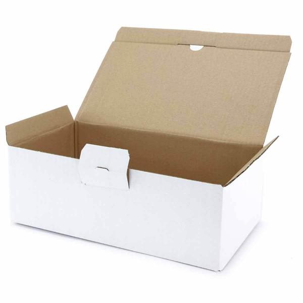 Faltschachtel 316x172x108 mm weiß mit Automatikboden