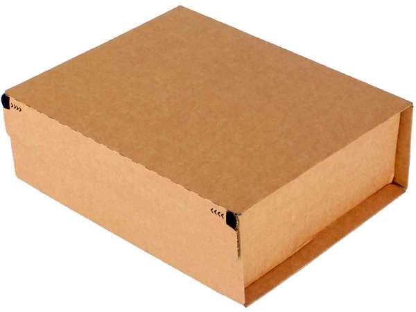 Versandkarton Postbox Secure 328x290x120 mm